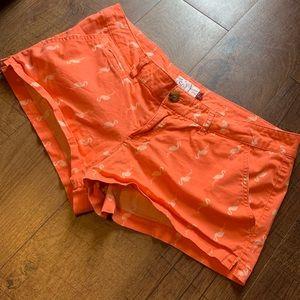 Flamingo Pattern Shorts